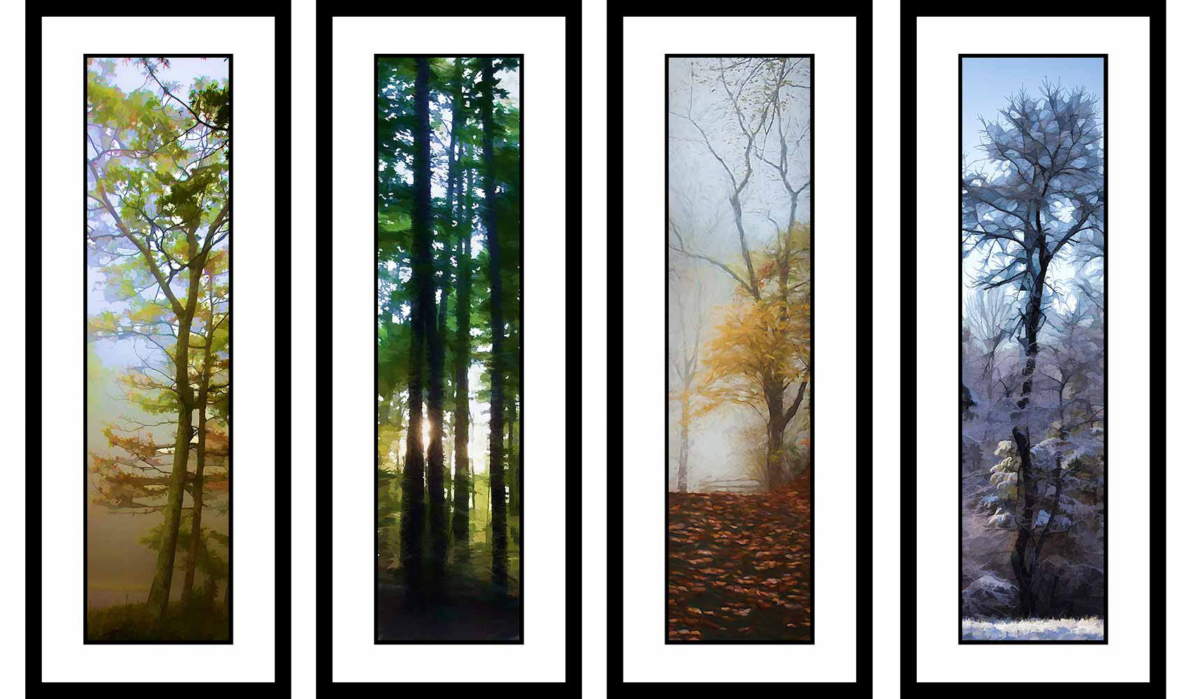 Muted Seasons grouping by Alison Thomas of Serenity Scenes Photography and Digital Art.
