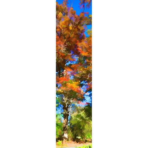 A magnificent old tree reaches into the sky, its leaves changing with the seasons. The sun shines bright, and a crisp fall day emerges in the contrast of bright orange leaves against a blue sky.  Old Orange by Alison Thomas of Serenity Scenes Photography and Digital Art.