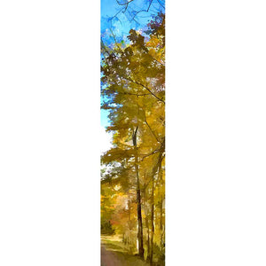 Thin, golden trees cluster together at the side of the road, abounding with autumn foliage. Their vibrant leaves stand out against the splash of bright blue sky above.  Roadside Yellow by Alison Thomas of Serenity Scenes Photography and Digital Art.
