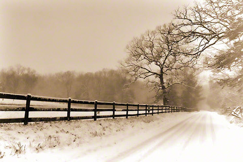 Snowstorm Travel by Alison Thomas of Serenity Scenes Photography and Digital Art.