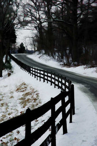 Slight shades of purple and green fill the stained glass of bare trees over a snowy country road bordered by a fence up a steep curved hill.  Snowy Bend by Alison Thomas of Serenity Scenes Photography and Digital Art.