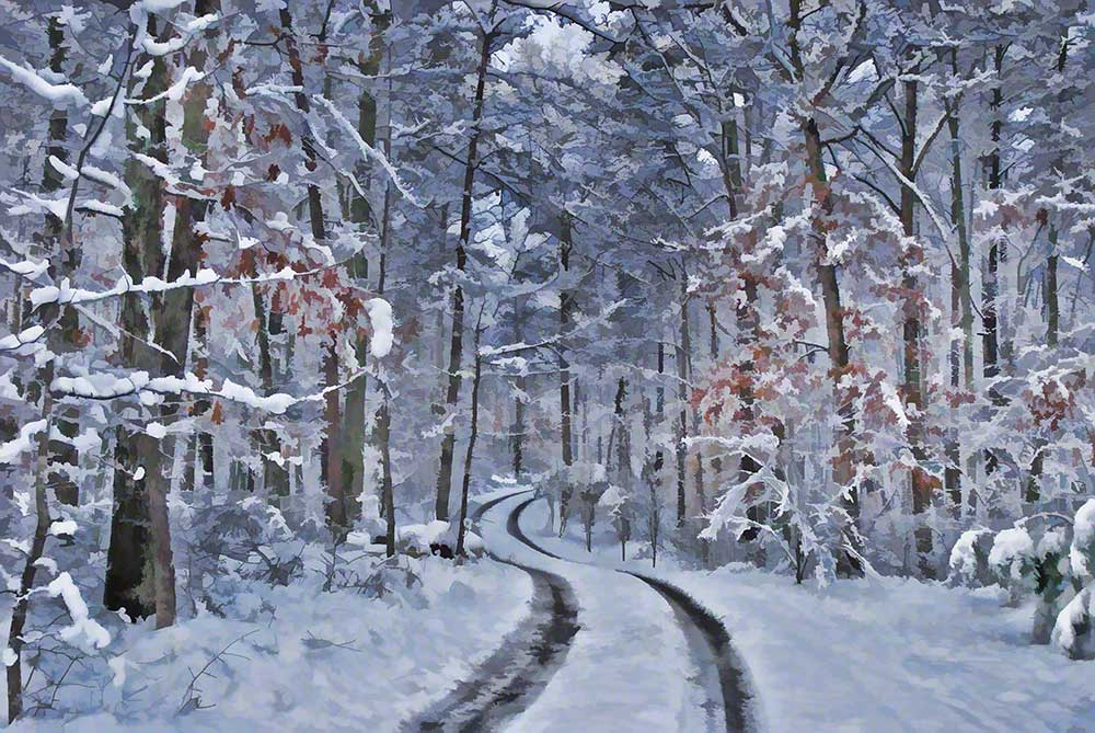The tracks of a single vehicle show a road winding its way through snow covered woods.  Snowy Travel by Alison Thomas of Serenity Scenes Photography and Digital Art.