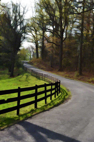 Stained glass trees and a country fence cast shadows on steep curved road up and around a hill.  Spring Bend by Alison Thomas of Serenity Scenes Photography and Digital Art.