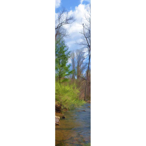 Spring Stream by Alison Thomas of Serenity Scenes Photography and Digital Art