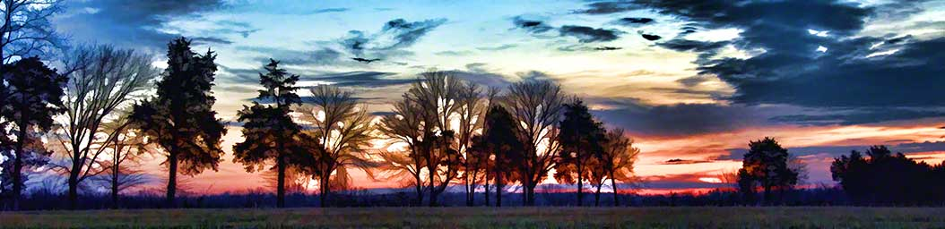 Dark clouds from the night's storms make way for a brilliant sunrise behind a row of trees.  Sunrise Clouds by Alison Thomas of Serenity Scenes Photography and Digital Art.