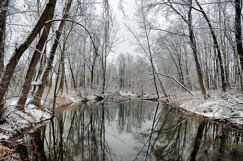 The snow-covered branches of a crisp winter morning are reflected in the glass like stillness of a river.  Winter Woods by Alison Thomas of Serenity Scenes Photography and Digital Art
