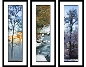 Winter Scenes grouping by Alison Thomas of Serenity Scenes Photography and Digital Art