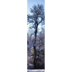 A tall winter tree and the forest around it dusted with snow, the sky and the forest floor both icy blue. The high, bare branches of the tree transform into the geometric shapes of stained glass.  Winter Woods by Alison Thomas of Serenity Scenes Photography and Digital Art