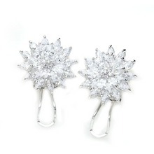 Load image into Gallery viewer, Henderson Earrings