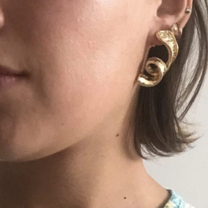 Aheloy Earrings
