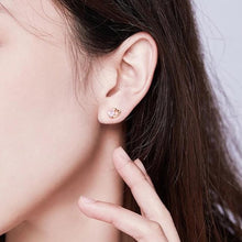 Load image into Gallery viewer, Viterbo Earrings