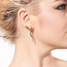 Load image into Gallery viewer, Durango Earrings