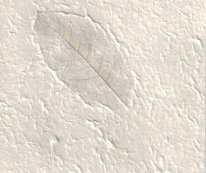 Handmade Paper - White with Leaves