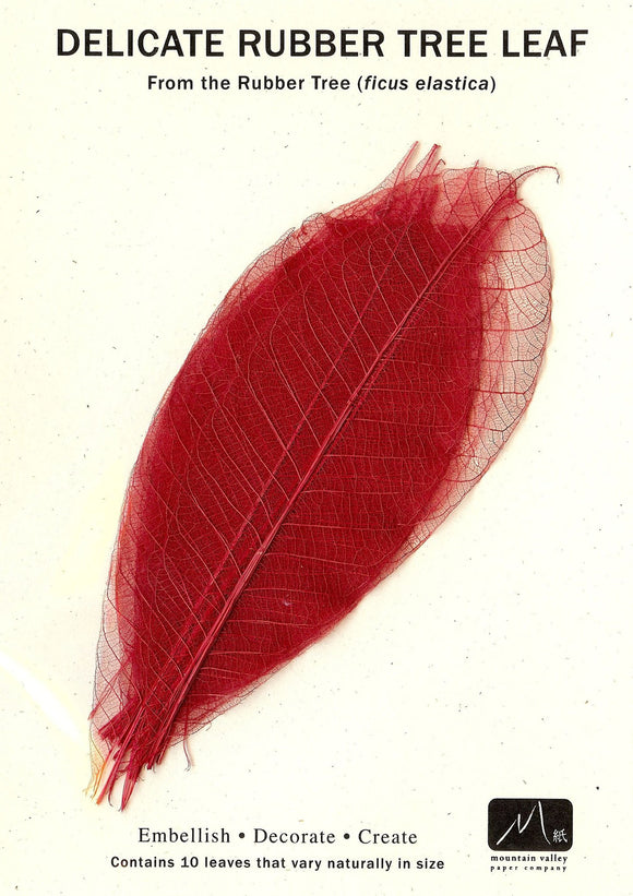 Rubber Tree Leaves - Red