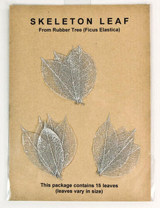 Rubber Tree Leaves - Silver
