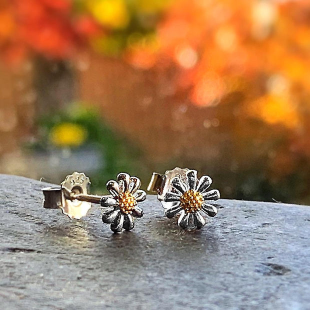 Silver Daisy Earrings 7mm - Paul Wright Jewellery