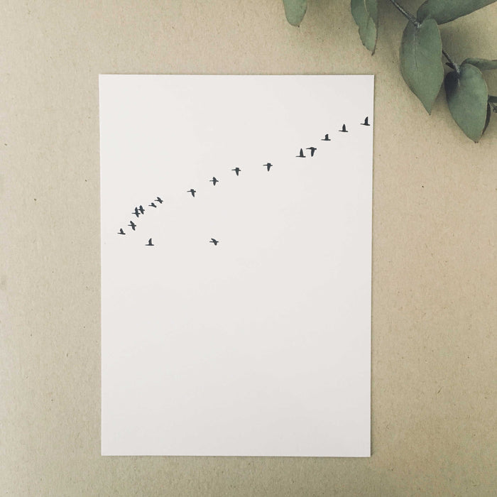 Graphics Edition Postkarte: Birds