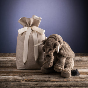 Reusable Gift Bag - Ever Present Giving - LittlePlasticFootprint