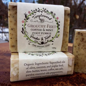 Grouchy Feet (coffee & mint) Foot Pumice- Tanglewood Garden & Farm - LittlePlasticFootprint