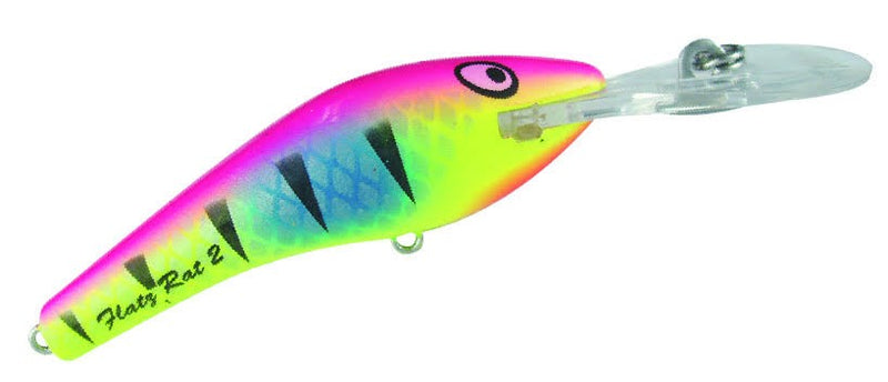 KILLALURE FLAT RAT 2+10 LURES