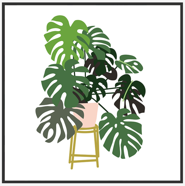 Pastel Potted Monstera