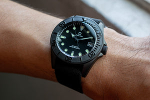 Stainless Steel Diver Bezel Insert - Type D Black (BI-DV-TC)