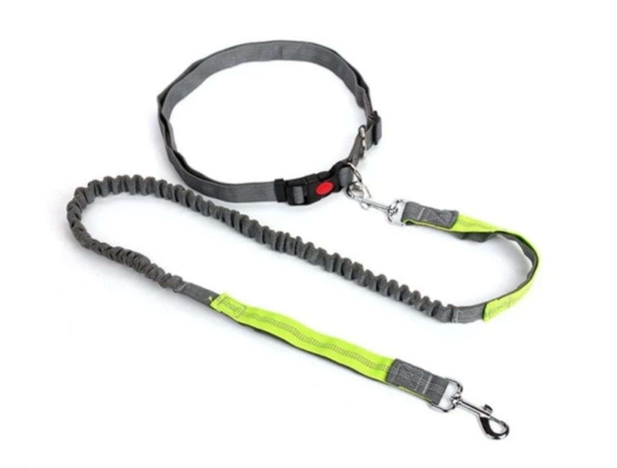 2-in-1 Hands-Free Dog Leash