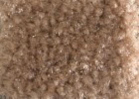 Carpet Tan Priced Per Sq/Ft-Add Installtion