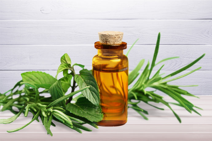 Know everything about: Tea tree oil for hair care