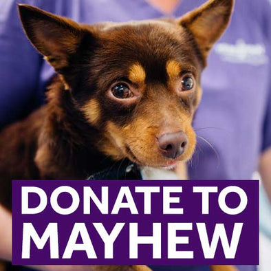 Donate to Mayhew