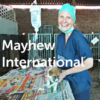 Mayhew International