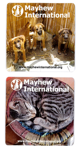 Mayhew International Coasters - The Mayhew Animal Home