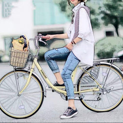 24-inch-6-speed janpan shimano transmission Lady and men bike communities city bicycle