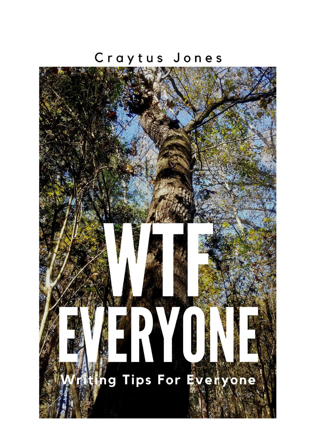 WTF Everyone - EPUB