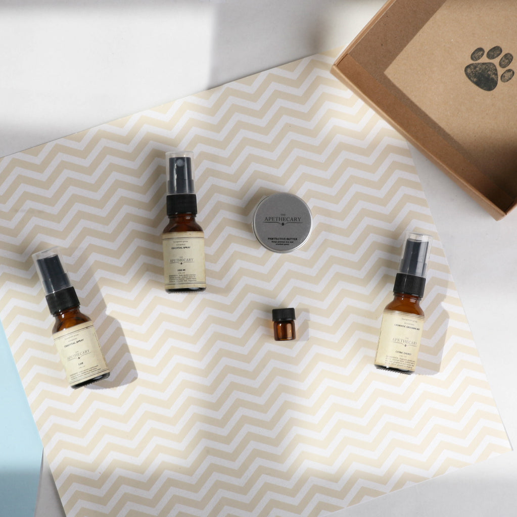 Essential Care Mini Kit Floral or Citric