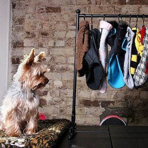sample_sale_dog_clothing-bitchnewyork