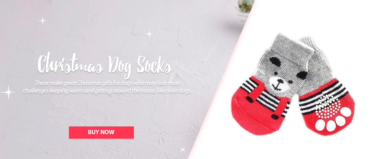 buy christmas dog socks