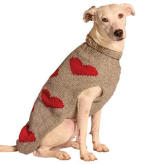 a sweater with hearts for dog
