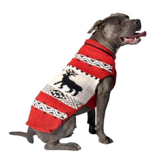 winter sweater for dog