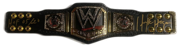WWE Championship 2013 Scratch Logo Mini Replica Title