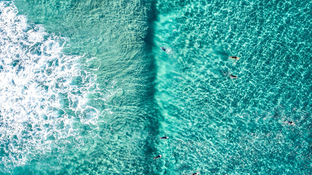 Aerial of Surfers in a turqoise ocean