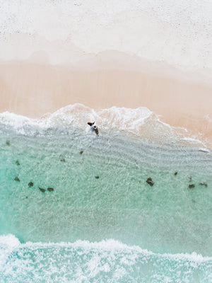 Aerial topdown of surfer walking out of water in Cape Town