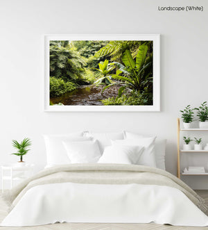Water flowing down river in a green jungle in Kenya in a white fine art frame