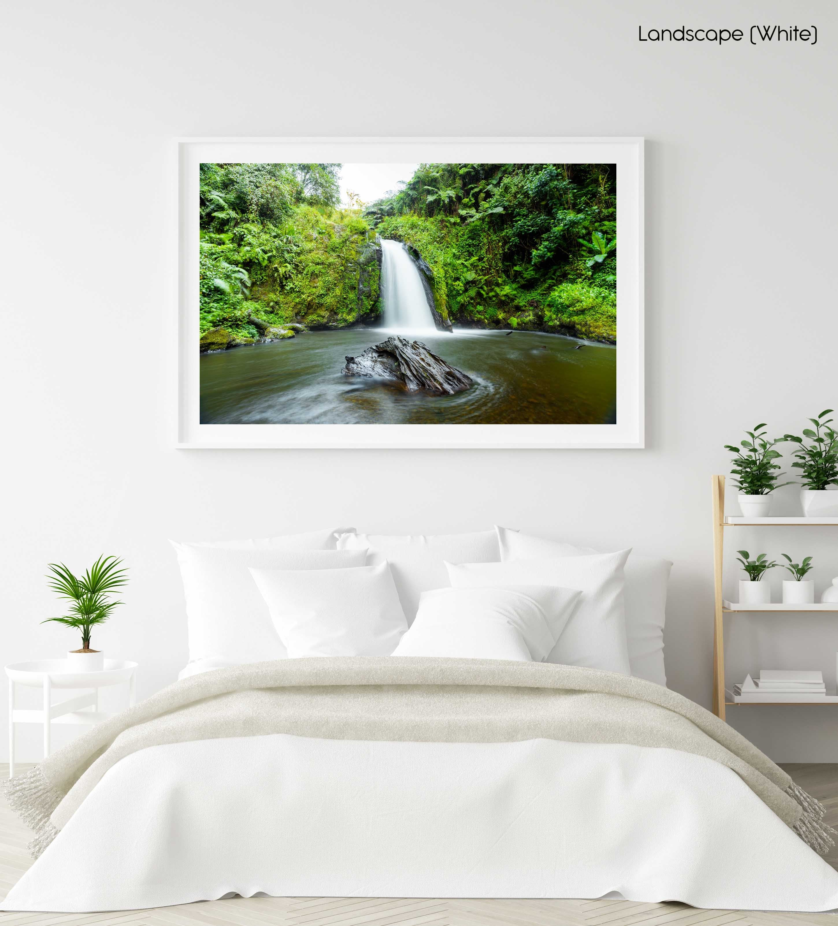 Green plants and a waterfall flowing in Mt Kenya in a white fine art frame