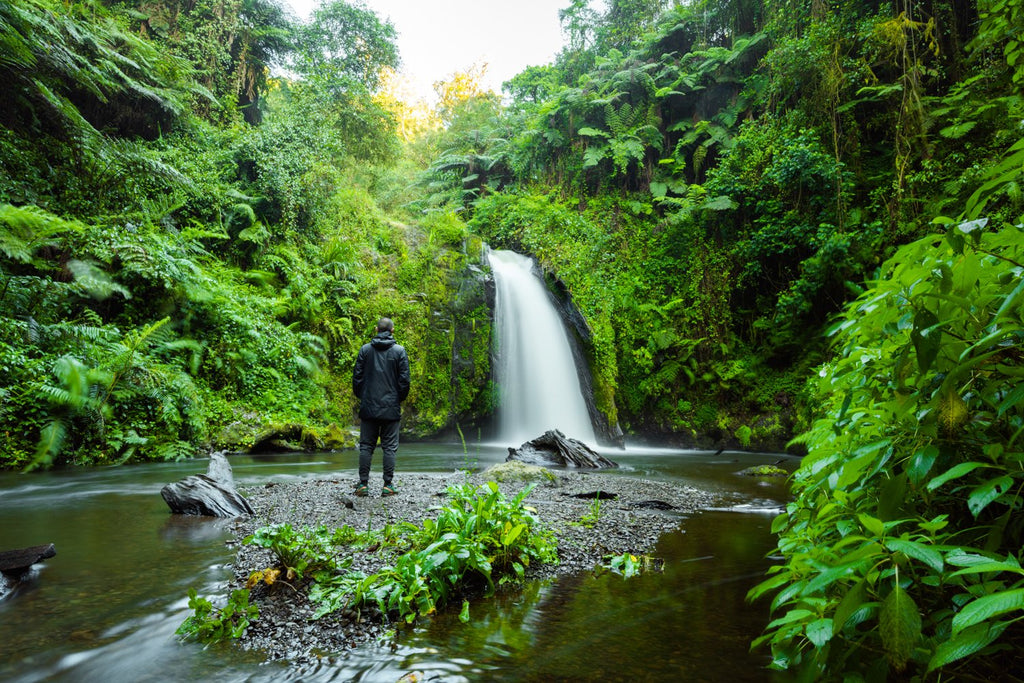 Green jungle and waterfall flowing in Mount Kenya