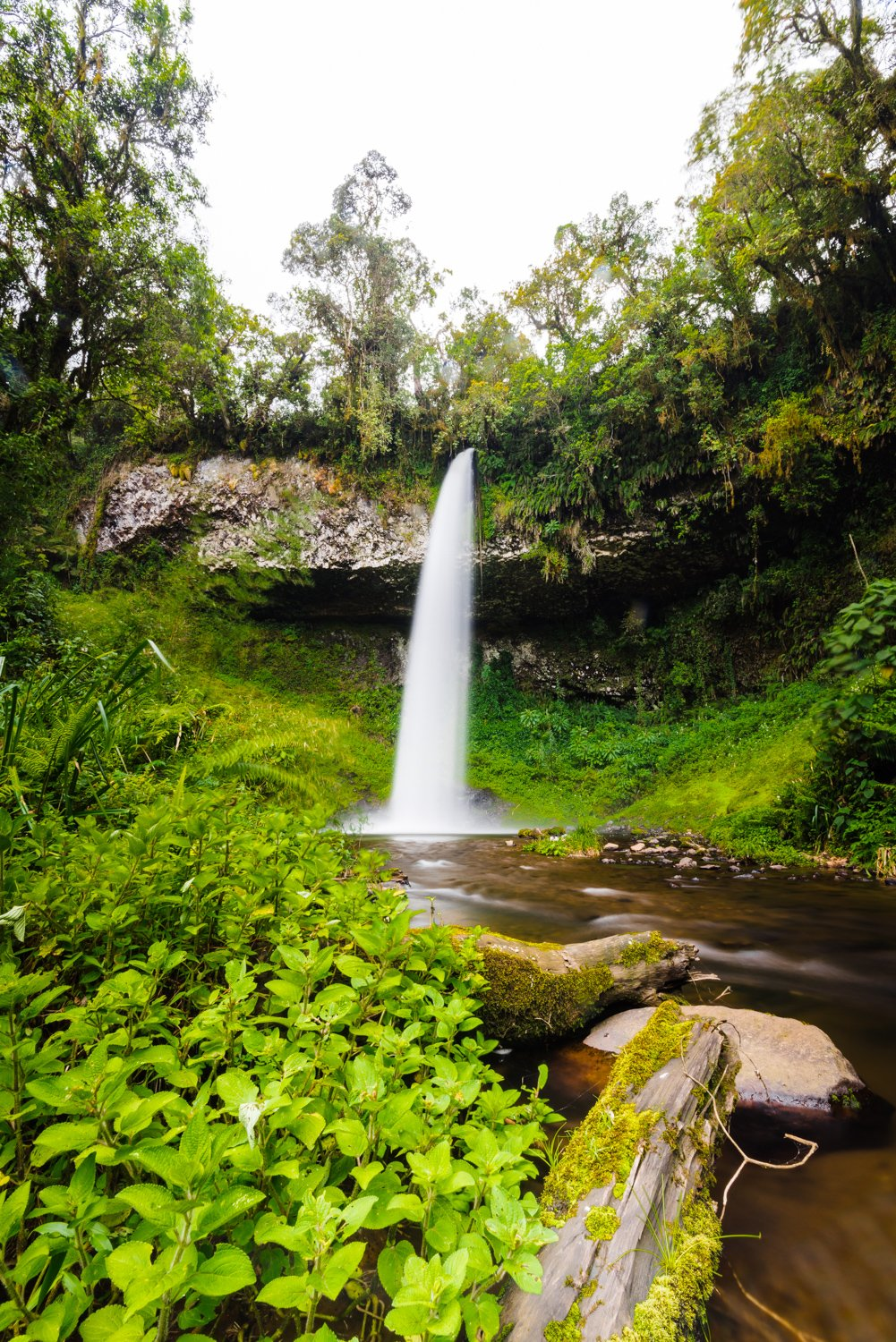 Big waterfall and green vegetation in Mount Kenya