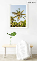 A palm tree in the sky in kenya in a white fine art frame