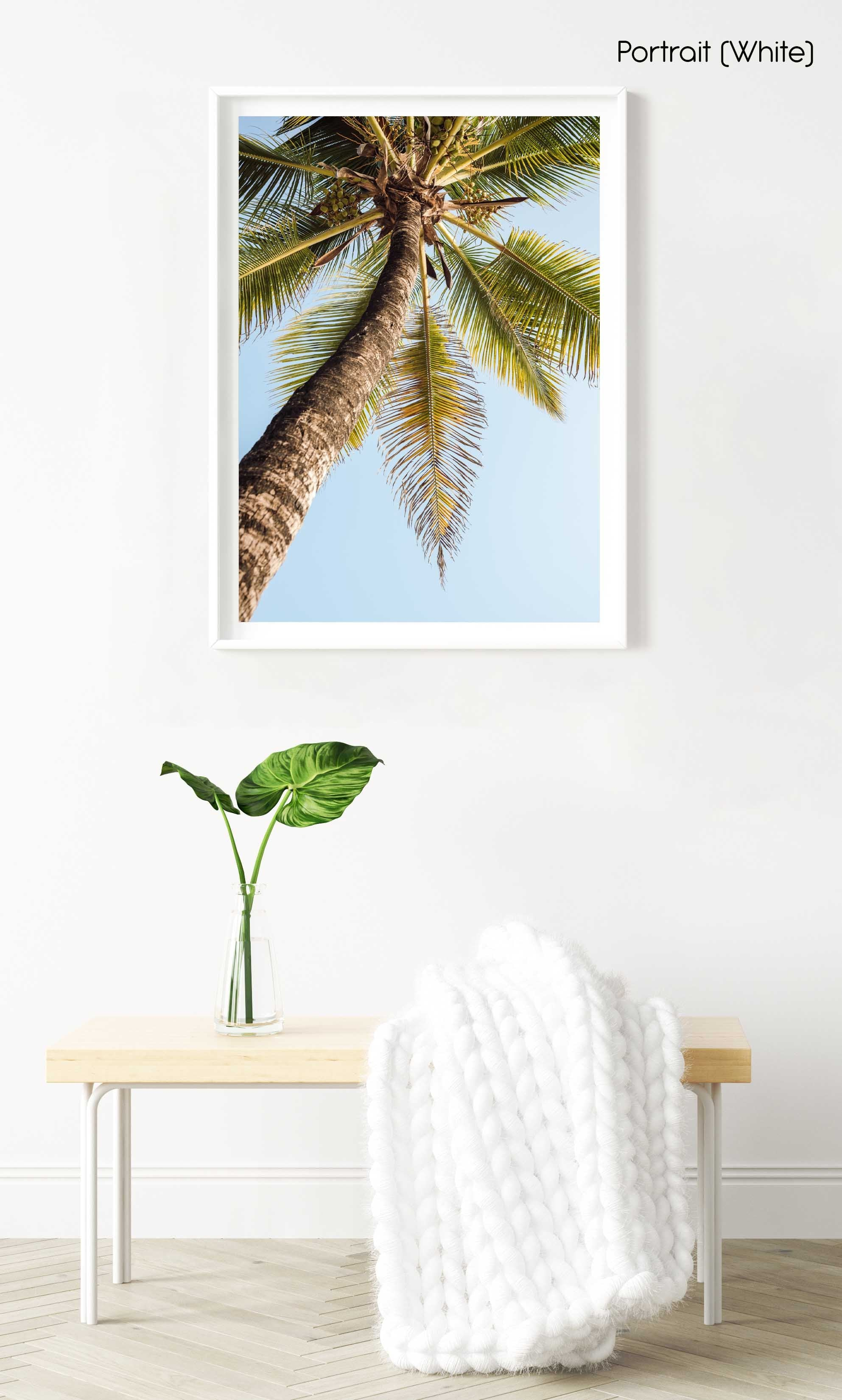 One palm tree on malindi beach in kenya in a white fine art frame