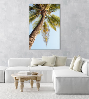 One palm tree on malindi beach in kenya in an acrylic/perspex frame