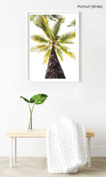 Green palm tree against white sky in Malindi Beach Kenya in a white fine art frame